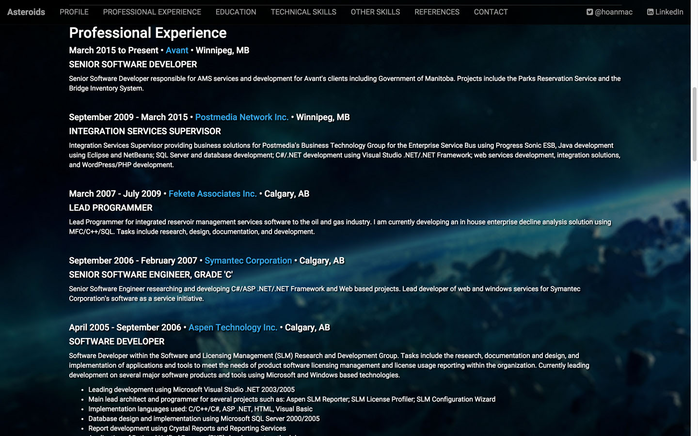 Professional Experience Page